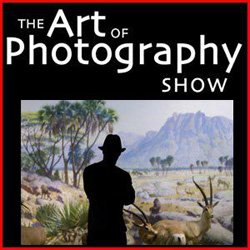 """Graphical logo for """"The Art of Photography Show,"""" September 29th – November 11th, 2012."""