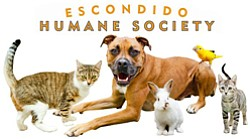 Promotional graphic for the Escondido Humane Society.