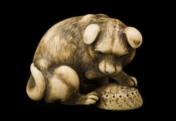 Ivory netsuke of a dog with an awabi shell signed Okatori. Early 19th century.
