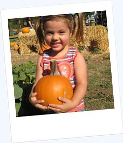 Promotional image of Family Pumpkin Patch at the San Diego Children's Discovery Museum. Image courtesy of San Diego Children's Museum.
