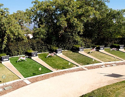 """Image of the """"Turf Exhibit"""" at the Water Conservation Garden. Courtesy of the Water Conservation Garden."""