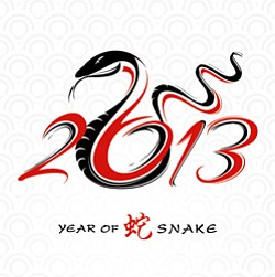 Promotional image of Chinese New Year 2013 year of the snake.