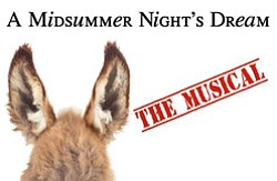 "Promotional graphic for ""A Midsummer Nights Dream The Musical!"" with a twist of the 60's performing  July 11 – August 18, 2013."