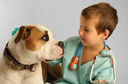 Promotional image of Banfield Future Vet Program lecture at the New Children's Museum on November 16, 2013. Courtesy image of New Children's Museum.