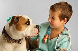 Promotional image of Banfield Future Vet Program lecture at the New Children's Museum on August 17, 2013. Courtesy image of New Children's Museum.