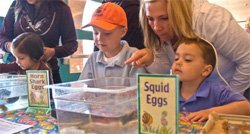 "Promotional photo of guests enjoying ""Spring Eggstravaganza"" activities at Birch Aquarium."