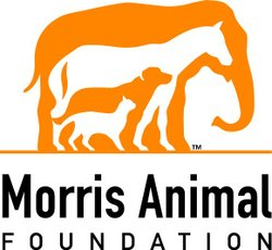 Graphic logo for the Morris Animal Foundation. Courtesy of the Morris Animal Foundation.