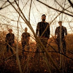 Image of the Palms, who will be performing at the Belly Up Tavern on July 10th, 2013.