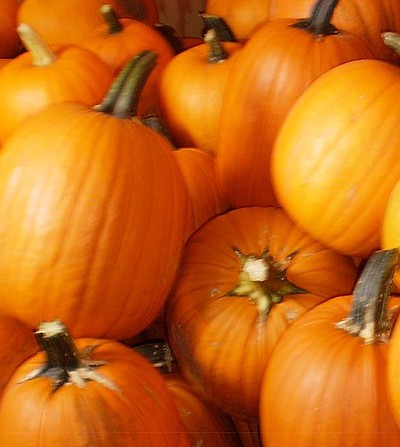 Photo of Pumpkins for Sikes Spook-tacular on October 27th, 2013.