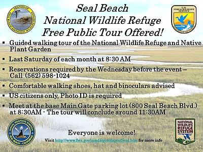 Promotional graphic for Seal Beach National Wildlife Refuge Tours. Courtesy of Friends of the Seal Beach NWR and Refuge staff