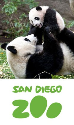Promotional image of San Diego Zoo Play Days  March 23 - April 7, 2013.