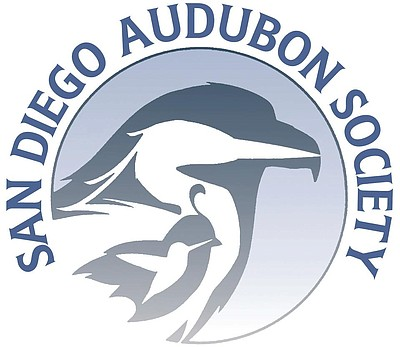 Graphic logo for the San Diego Audubon Society.