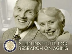 Promotional graphic for the Stein Institute for Research on Aging.