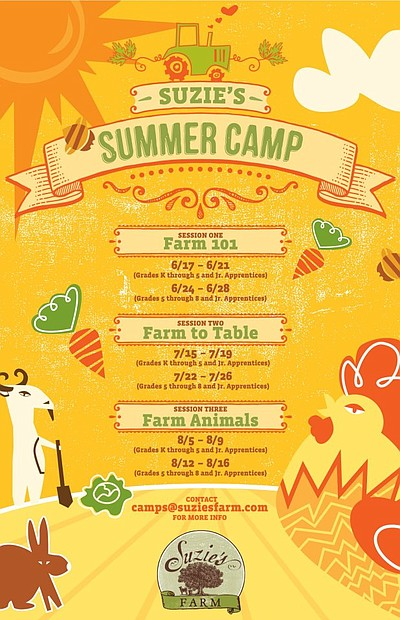 Promotional graphic for Suzie's Summer Camps.