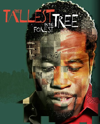 Promotional graphic for ''The Tallest Tree In The Forest.'' Courtesy of the La Jolla Playhouse.