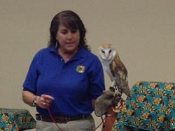 Promotional image of Wild Wonders Animal Show at the University Branch Library.