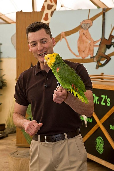 Image of a bird and zookeeper during a show at the San Diego Zoo.