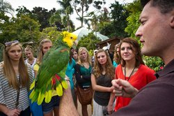 Image of a zookeeper holding a bird at the San Diego Zoo.