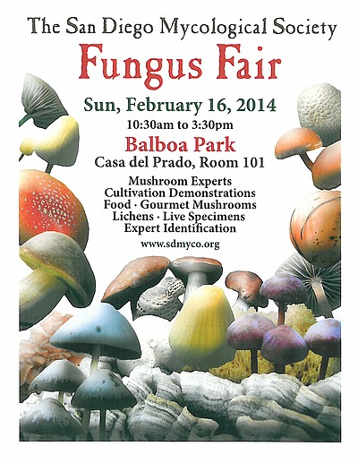 Promotional flyer for the San Diego Mushroom Fair on February 16, 2014.
