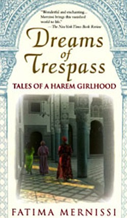 "Graphic cover of ""Dreams of Trespass: Tales of a Harem Gi..."