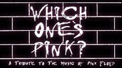 Promotional graphic for Which One's Pink?, a Pink Floyd Tribute.