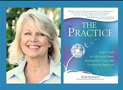 "Promotional graphic for ""The Practice"" by Barb Schmidt."