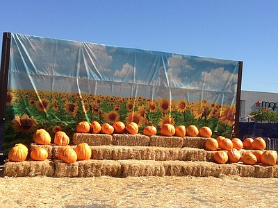 Promotional photo for the 2014 Chula Vista Pumpkin Station. Courtesy of Pumpkin Station.