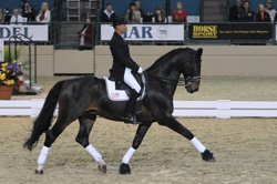 Promotional photo of the Del Mar National Horse Show Dressage Week. The Show runs April 17 - May 4, 2014.