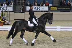 Promotional photo of the Del Mar National Horse Show Dres...