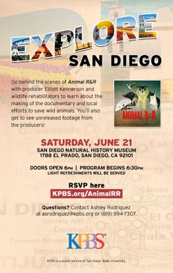 """Promotional graphic for the KPBS Explore San Diego event taking you behind the scenes of """"Animal R&R."""""""
