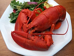 Promotional image of a lobster dish made at Alchemy of the Hearth. Courtesy image of Alchemy of the Hearth.