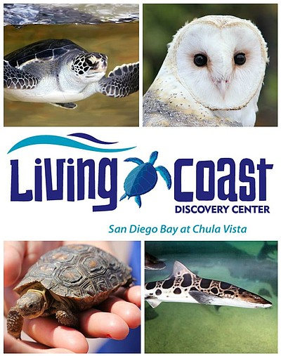 Promotional image for the Living Coast Discovery Center.
