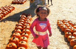 Promotional photo for the 2014 National City Pumpkin Patch. Courtesy of Pumpkin Station.
