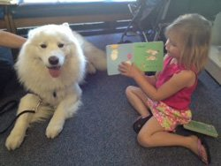 Promotional photo of Paws to Read at Mission Valley Branch Library.