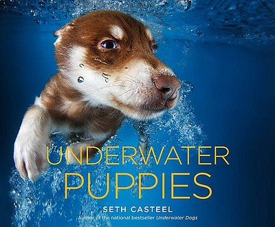"Cover photo of the book ""Underwater Puppies"" by Seth Casteel."