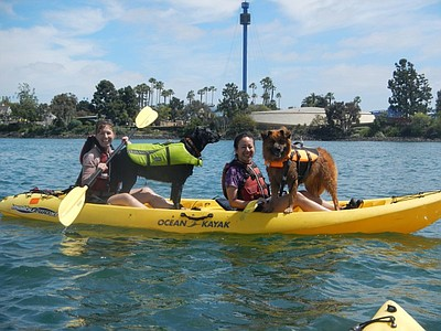 Promotional photo for Kayaking with your Dog. Courtesy of Leash Your Fitness.