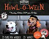 "Promotional flyer for the Backyard Kitchen & Tap's ""Howl-o-ween."""