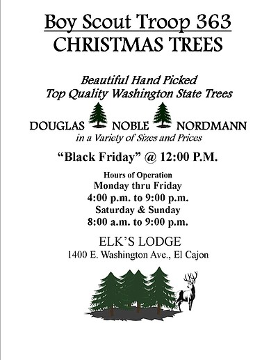 Promotional graphic for the Boys Scout Christmas Tree Lot