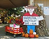 Promotional photo for the Fall Harvest Festival & Boutique 2015 at Farm Stand West