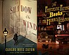 "Graphic book covers for One Book, One San Diego 2015 selections: ""The Shadow of the Wind,"" ""The Fantastic Flying Books of Mr. Morris Lessmore,"" and ""The Dumbest Idea Ever."""