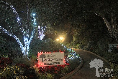 San Diego Botanic Garden Presents Garden Of Lights 2015 December