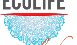 Promotional graphic for ECOLIFE's Moonlight Over Morocco 2016 gala.