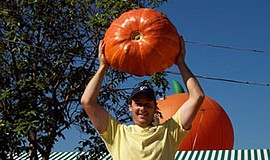 Promotional photo of a big pumpkin from the Mission Valley Pumpkin Station