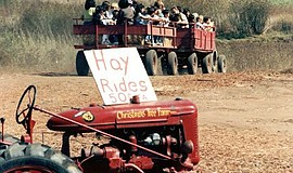 Promotional photo for hay rides at Rancho Bernardo Pumpkin Farm