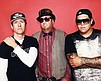 Promotional photo for the Sublime with Rome Summer Tour 2016