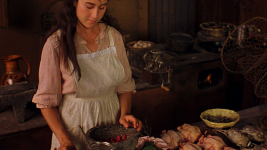 like water for chocolate movie review In the early years of the twentieth century, on a small ranch in mexico, the story of three sisters and their repressive mother unfolds tita (lumi cavazos) is the youngest daughter of mama elena (regina torne), and, as such, because of a family.