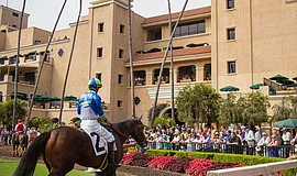 Photo at the Del Mar Racing Grounds courtesy of the Del Mar Thoroughbred Club