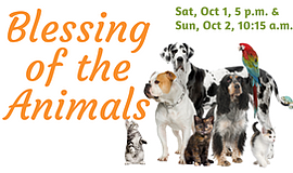 Promotional graphic for Blessing Of The Animals.