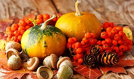 Promotional photo of a fall table centerpiece. Courtesy of San Diego Floral D...