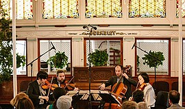 A photo from a Haydn Voyages concert.